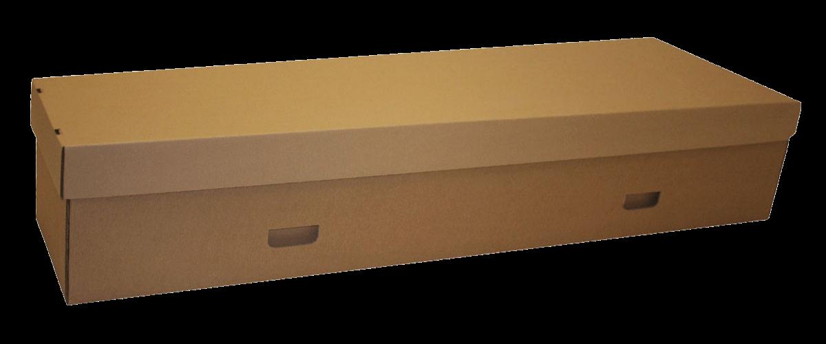 cardboard-coffin-trnsp-bk